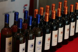 49 - Lebanese wine Ixsir - Photo by Eve Comperiati